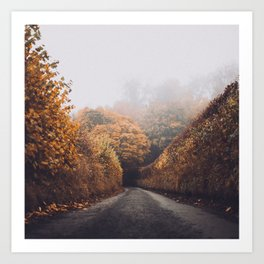 Autumn Photography - Cold Road Art Print