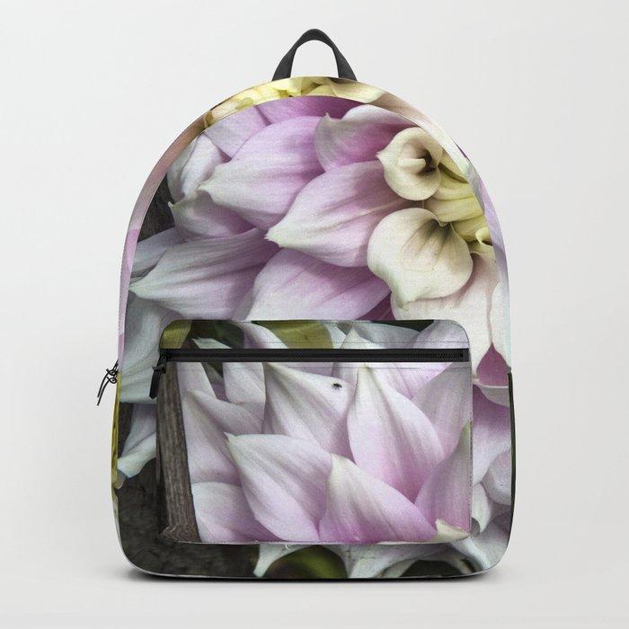 Dahlia / In The Garden / 23 Backpack