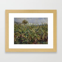 "Auguste Renoir ""Field of Banana Trees"" Framed Art Print"