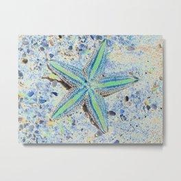 Starfish Abstract Metal Print