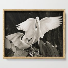 White bird dance 1 Serving Tray