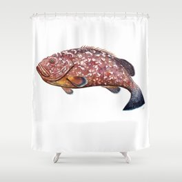 Dusky grouper or merou Shower Curtain