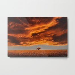 Rhode Island Tree and Timothy and Alfalfa Field Landscape Painting by Jeanpaul Ferro Metal Print