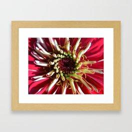 Red Spiral Framed Art Print