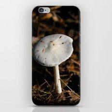 mushroom in the sun iPhone & iPod Skin