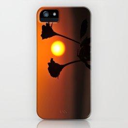 Romantic Rose Sunset iPhone Case
