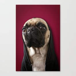 Lola on Red Canvas Print