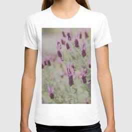 Lavender Dreams T-shirt