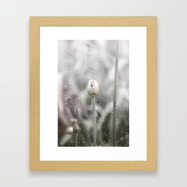 AFE Allium Framed Art Print