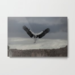 Spread your wings and land Metal Print