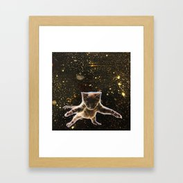 Kitten. In. Space. Framed Art Print