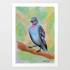 Little Birds 4/30 Art Print