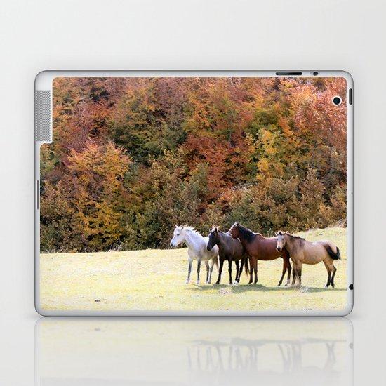 Horses Valley Laptop & iPad Skin