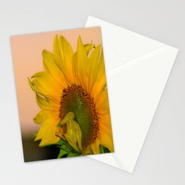 Mammoth Sunflower Stationery Cards