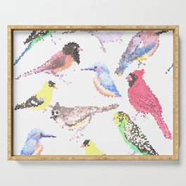 colorful birds stained glass art- budgie cardinal goldfinch titmouse kingfisher cedar waxwing juncos Serving Tray