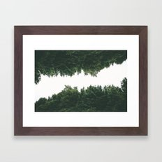 Forest Reflections VI Framed Art Print