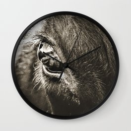 Stare Down With A Black Angus Wall Clock