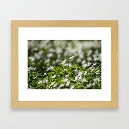 Flowers to Mum Framed Art Print