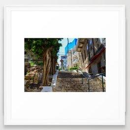 Haifa: Cohabitation Framed Art Print