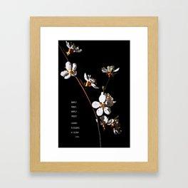 Sakura flowers on black 04 Framed Art Print