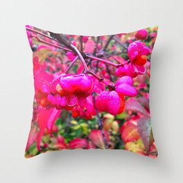 Spindle Tree Flowers in the Rain Throw Pillow