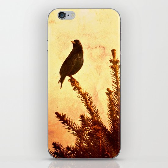Gothic Bird iPhone & iPod Skin