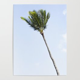 Palm tree party of one Poster
