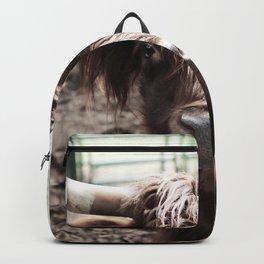 Longhorn Backpack