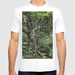 Tree of Wonder T-shirt