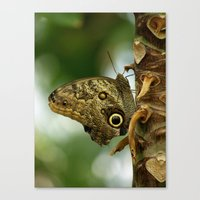 camouflage Canvas Prints featuring Camouflage by Monica Ortel ❖