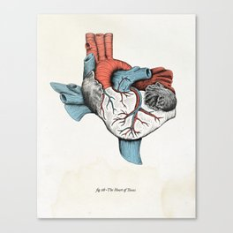 The Heart of Texas (Red, White and Blue) Canvas Print