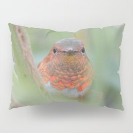 An Allen's Hummingbird Amid Mexican Sage Pillow Sham