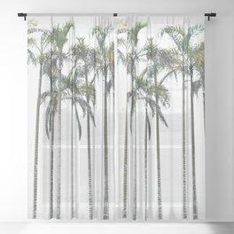 Palm Trees 12 Sheer Curtain