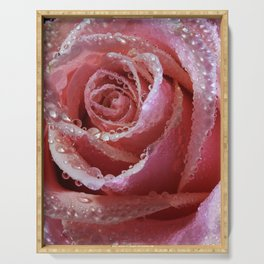 Dewdrops On Dusky Pink Rose Serving Tray