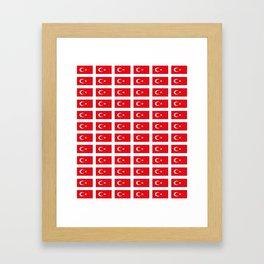 flag of turkey -turkey,Turkish,Türkiye,Turks,Kurds,ottoman,istanbul,constantinople. Framed Art Print
