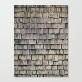 SHELTER / 3 Canvas Print