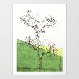 rose branch in spring Art Print