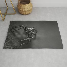 Scurrying Around, Jumping Spider Black and White Macro Photograph Rug