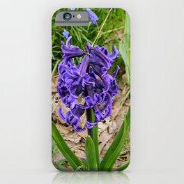 Loving Spring  Garden... iPhone Case