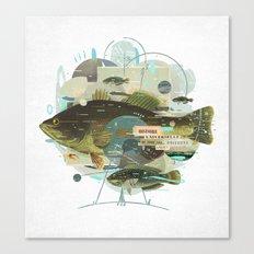 Cardume Canvas Print