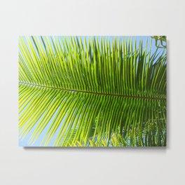 A single palm branch Metal Print