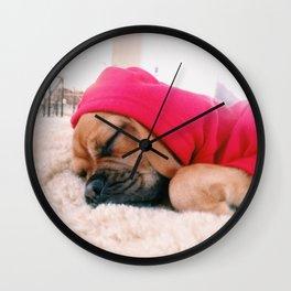 Hank sleeping, softly Wall Clock