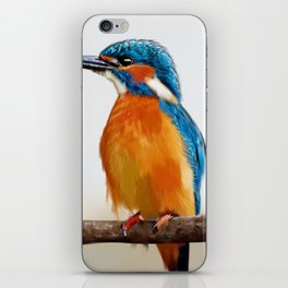 Common Kingfisher iPhone Skin