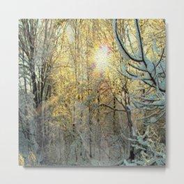 Snow Wonder Metal Print