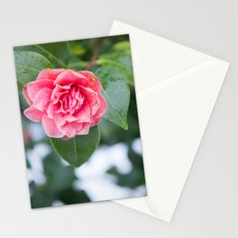 Beauty in Strength Stationery Cards