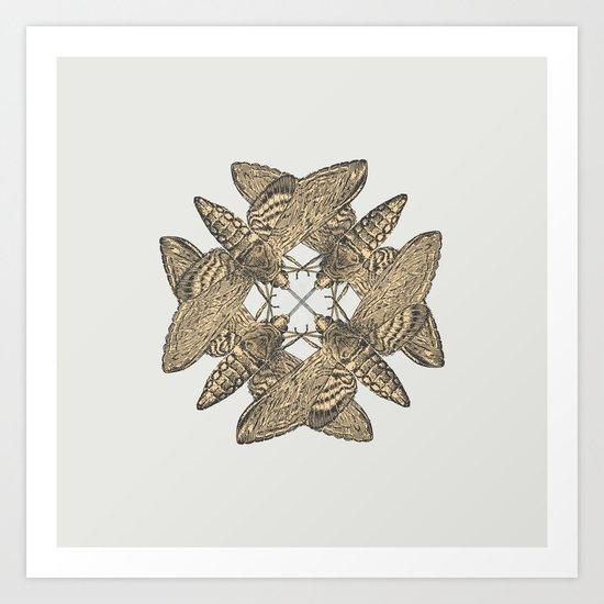 Motte Art Print