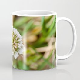 White Clover Flower (Macro) Coffee Mug