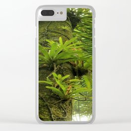 Bromeliads up a Sierra Palm in El Yunque rainforest PR Clear iPhone Case