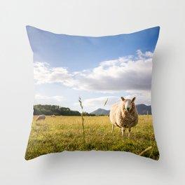 Sheep grazing Lake District, England Throw Pillow