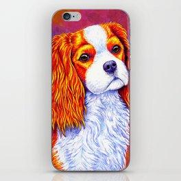 Colorful Cavalier King Charles Spaniel iPhone Skin